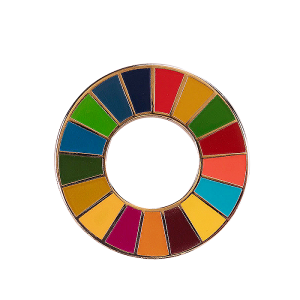 SDG hard enamel lapel pin
